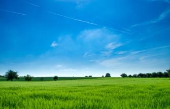 7 nüanssi, mida jälgida elamukrundi valikul