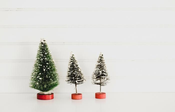11 ägedat alternatiivi jõulukuusele