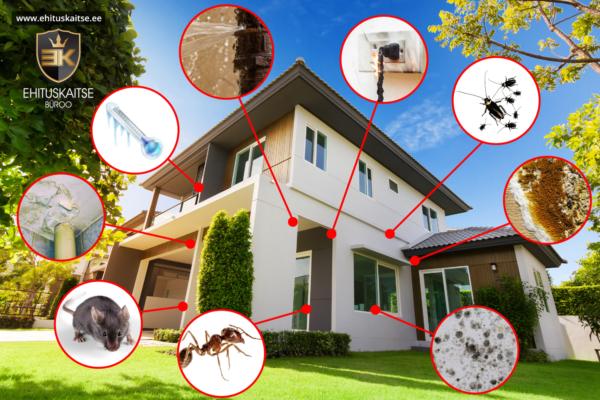 ee713eb0ccf Eestist võib kinnisvara ostul tõestisündinud näitena tuua järgmise  olukorra: klient soovis osta korterit, mis ehitati uusarendusse ...