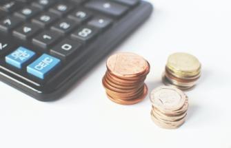 Kui pikaks ajaks laenu võtate?