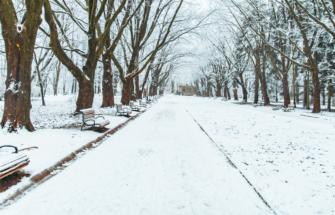 """Uuring: pea pooled eestlased oleksid nõus """"lumemaksu"""" kehtestamisega."""